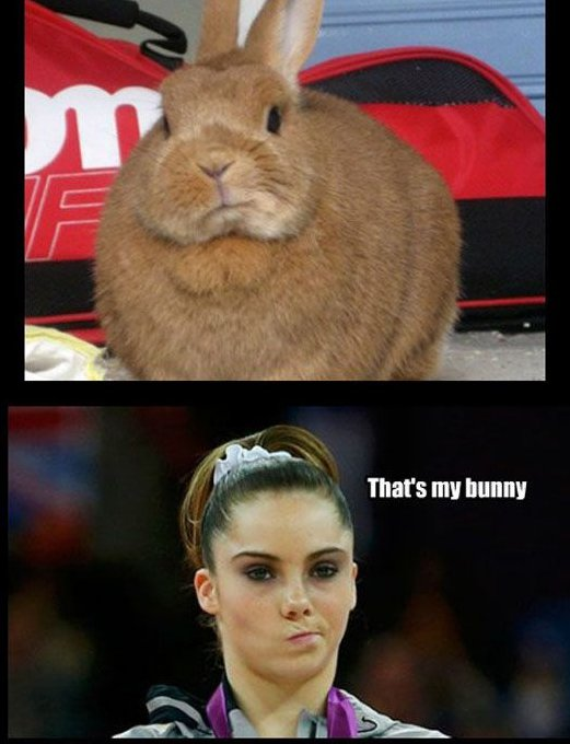 That is my bunny