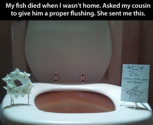 A Proper Funeral