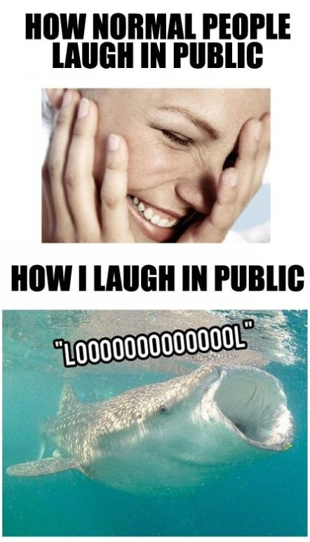 Laughing in Public