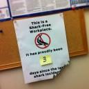 Shark Free Workplace