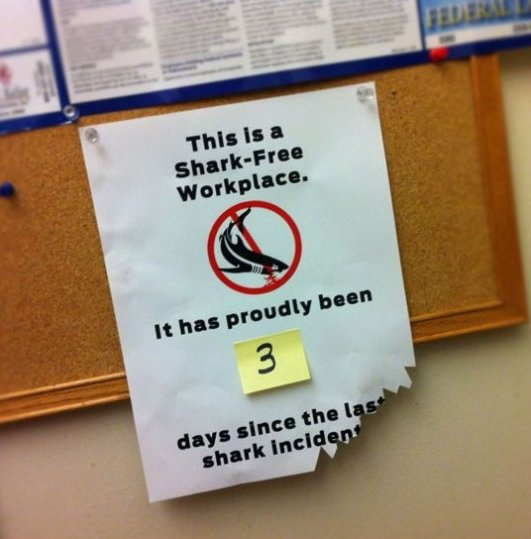 Shark Free Workplace