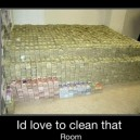 I Would Clean That Room