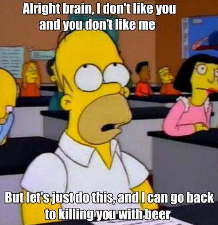 Just Homer
