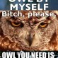 Owl by myself