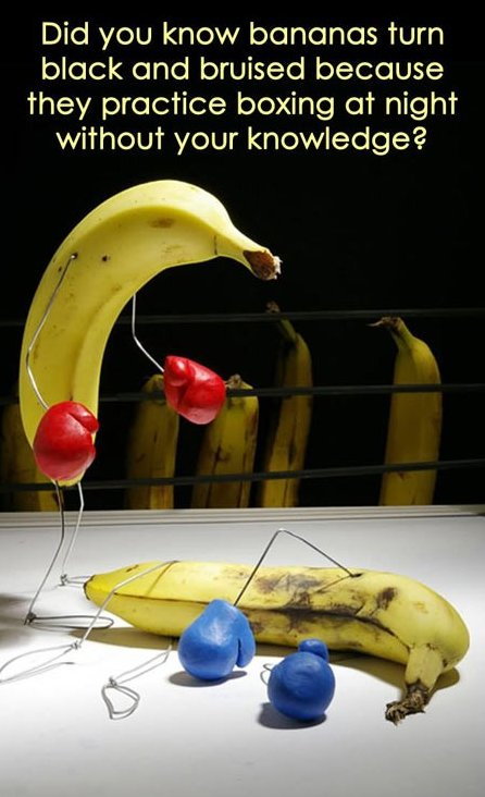 What bananas do at night