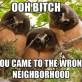Wrong neighborhood