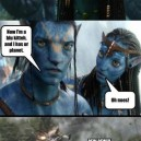 Avatar summed up