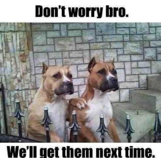 Don't Worry Bro