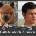 Gillett Mach 3 Fusion