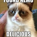 Grumpy Cat vs. Nemo