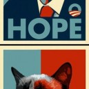 Grumpy cat vs. Obama