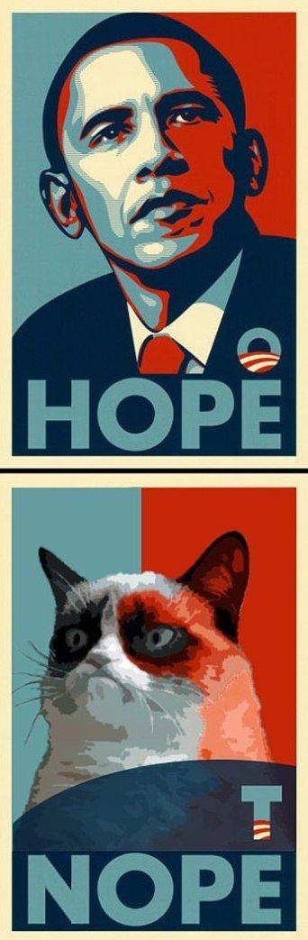 Grumpy cat vs. Obama
