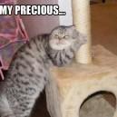 My Precious!