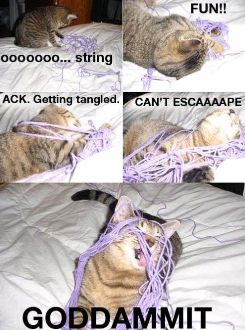 Oooh! A String!