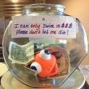 Tip jar at a local restaurant