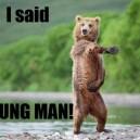 YMCA Bear