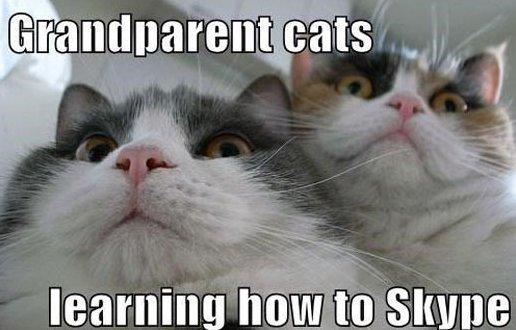 Grandparent Cats