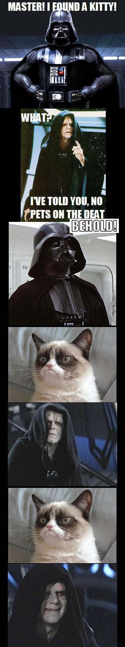 Grumpy Cat vs. The Dark Side