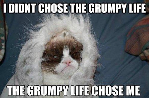 Grumpy life