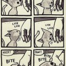How cats think