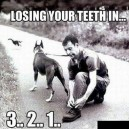 Loosing your teeth in…