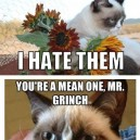 MEME – Best Of Grumpy Cat