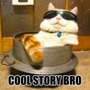 MEME – Cool story bro
