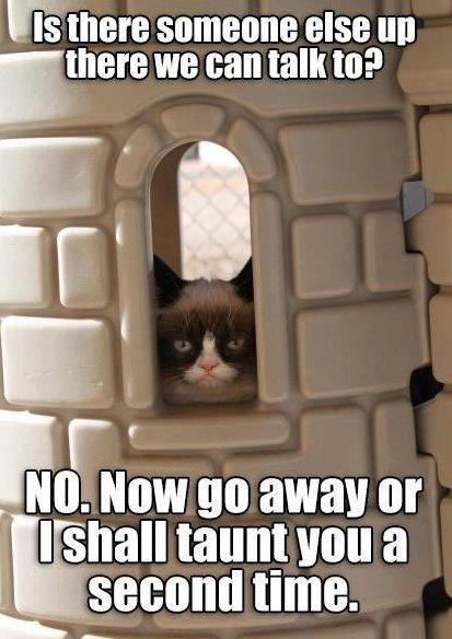 MEME – Grumpy Cat