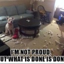 MEME – What's done is done