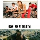 Me vs. My Friends at the Gym