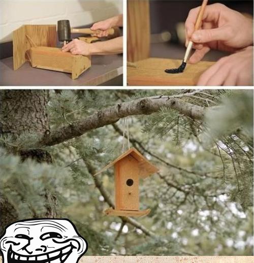 Poor Birds…