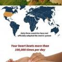 Some Random Facts