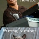 Stevie calls Grumpy Cat