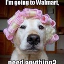 Typical Walmart Shoppers