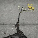 A simple crack on the ground can become art