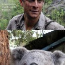 Bear Grylls In Australia