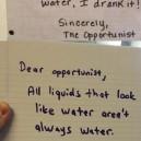 Dear opportunist
