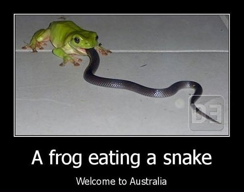 Funny Pictures – Welcome to Australia