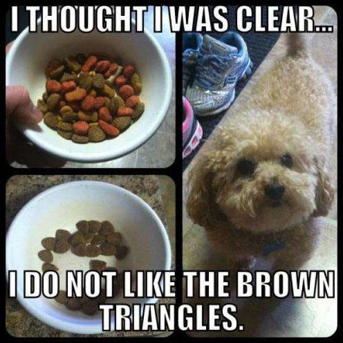 Gourmet Dog