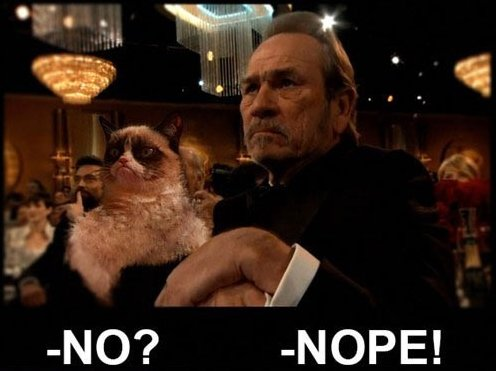 Grumpy Cat and Tommy Lee Jones