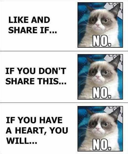 Grumpy Cat vs. Facebook