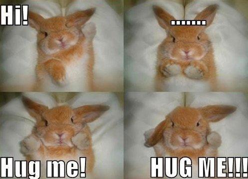 MEME – Hug me