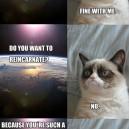 MEMES – Grumpy Cat