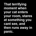 That terrifying moment