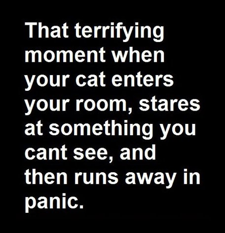That terrifying moment