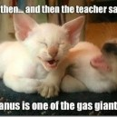 And then the teacher said…