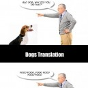 Dog translation