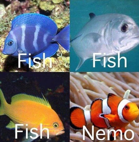 Fish vs. Nemo