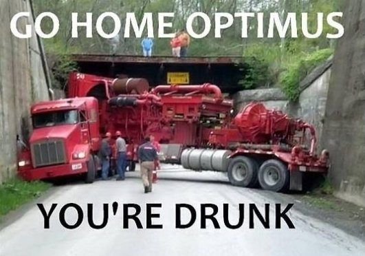 Go home Optimus