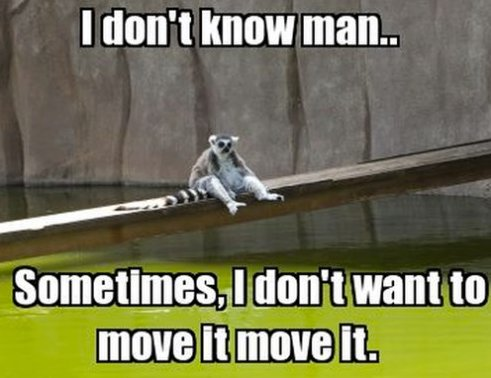 I like to move it move it!